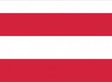 Brněnská vlajka