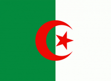 Alzirsko vlajka