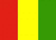 Guinea vlajka
