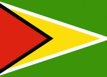 Guyana vlajka