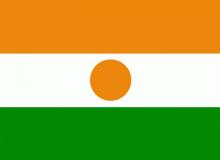 Niger vlajka