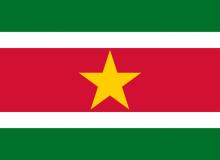 Surinam vlajka